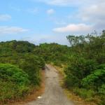 ソンチャ半島の自然