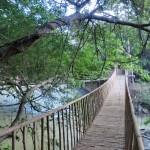 ブオンドンの吊り橋