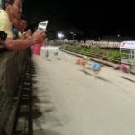 ブンタウのドッグレース