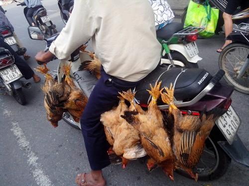 チキンバイク