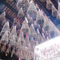 ホーチミンの中華街「チョロン」を歩いてきました(後編)