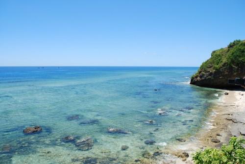 島と海とニンニクと