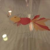 金魚 - ゴールドフィッシュ(Gold Fish)