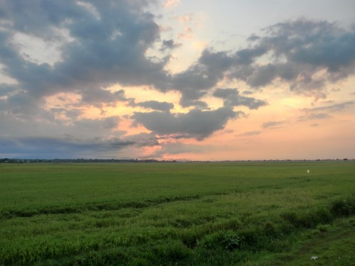 国道から見えた夕焼け