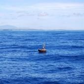[2013/7/18]海に浮かぶかご舟