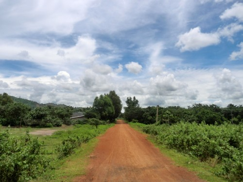 赤土の一本道