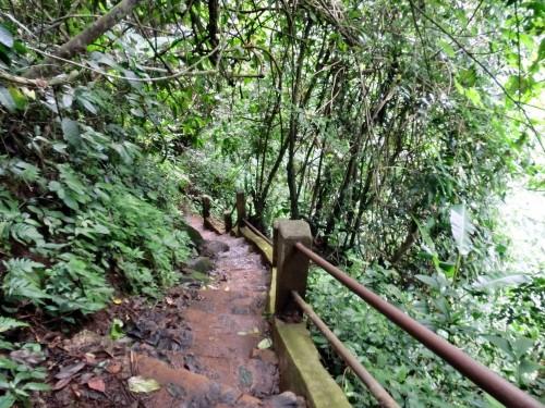タートイートゥーの滝への道