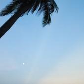 [2013/10/01]椰子と月と海と
