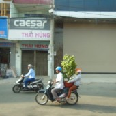 [2013/10/10]大きな植木鉢もバイクでらくらく