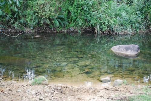 [2013/11/3]透明な水の流れる川