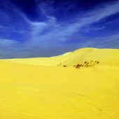 ファンティエットの白砂の砂丘と黄砂の砂丘、2つの砂丘に行ってみよう