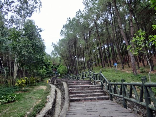 階段を登っていきます。
