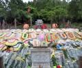 「赤いナポレオン」と呼ばれたヴォー・グエン・ザップ将軍のお墓参りをしてきました