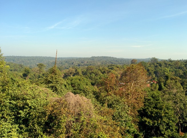 山頂の寺院からの景色