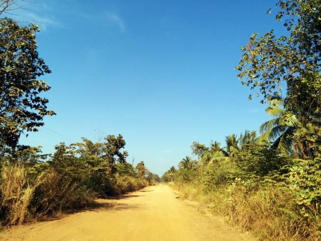 遺跡に向かう美しい一本道