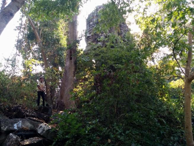森のなかにある寺院