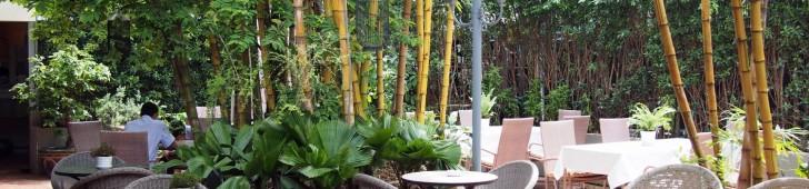 タンニエン (Thanh nien Restaurant)