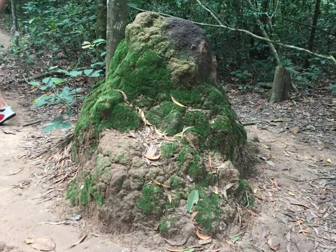 当時は鋤で地面を掘り、固い土を集め、通気口を作ったそうです。