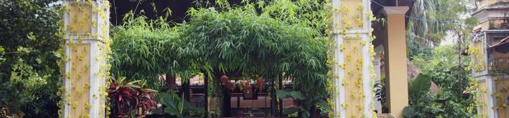 クエヴィエット(Quê Việt)