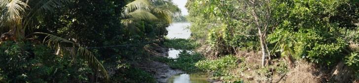 メコンデルタツアー最大の注目ポイント、カイベーで手漕ぎボートに乗って密林を進んで楽しんでみよう。