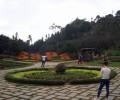 サパ市内のハムロン山観光区で伝統パフォーマンスと景色を楽しむ