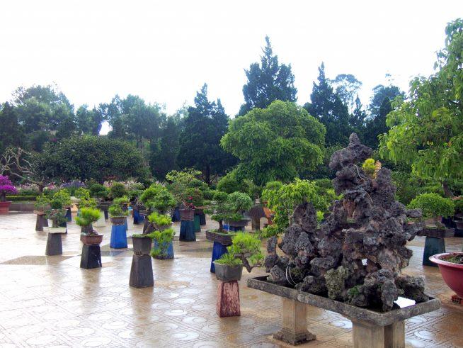 盆栽ガーデン