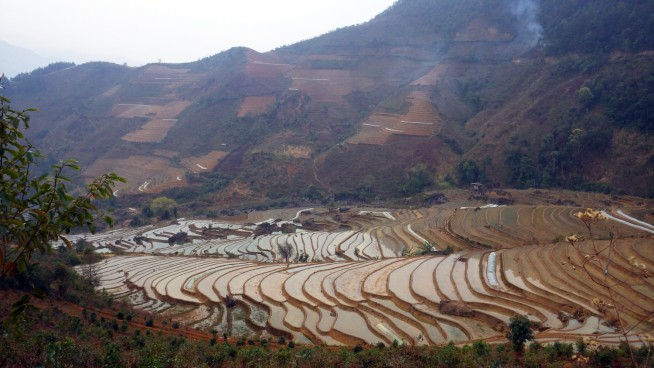 チャムタウの町(Trạm Tấu)郊外の棚田 モン族は美しい棚田を作るので有名