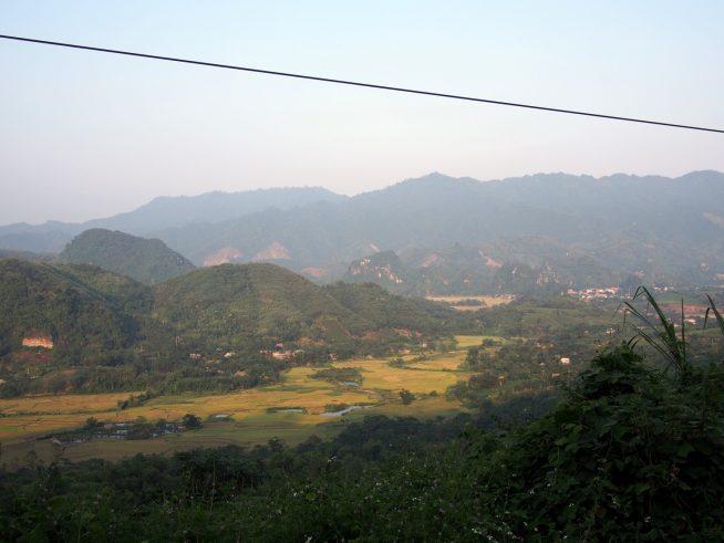 ベトナムの田舎の風景