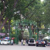 実はアジア最古のサイゴン動植物園はホーチミンの隠れた超おすすめスポット