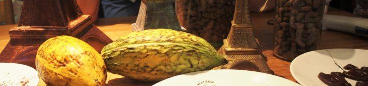 有名日本人パティシエ直伝、ベトナム産カカオを使ったチョコレートイベントに行ってきました!