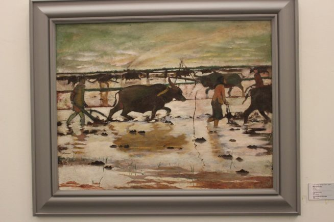 牛と畑を耕す様子