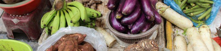 「東南アジア」感満載の、ハノイ中心にあるベトナム最大の市場「ドンスアン市場」