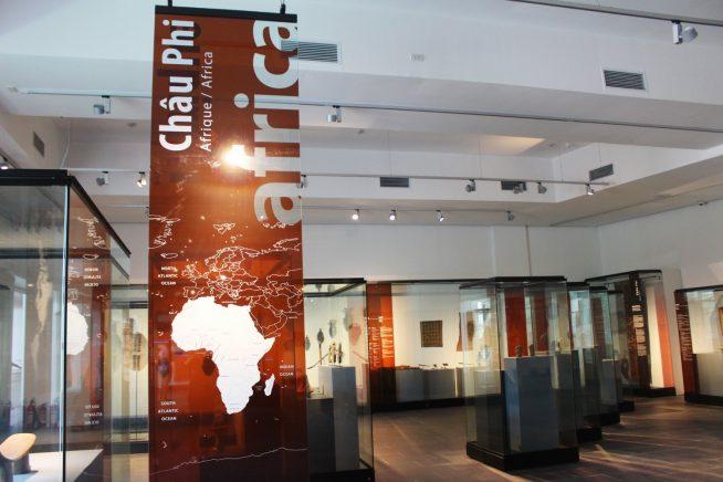 アフリカの展示エリア