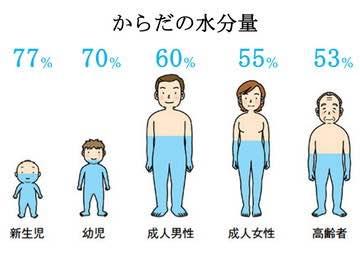 体内の水分量