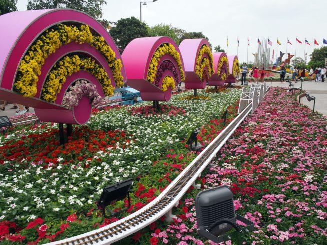 ピンクや赤などの花畑が可愛らしい。