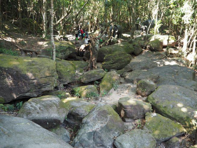 チャン渓流の下流