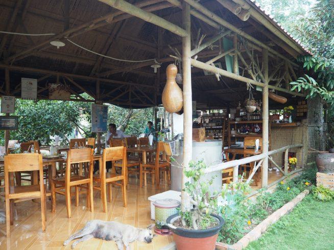 農園の真ん中にはかわいいカフェがありました