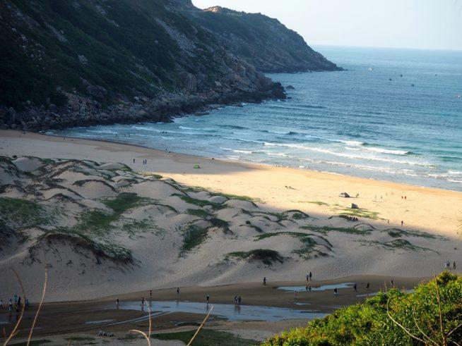 透き通った海、鮮やかな木々、白い砂浜のコンストラストが綺麗!