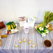 ミモザスパ(Mimosa Spa)