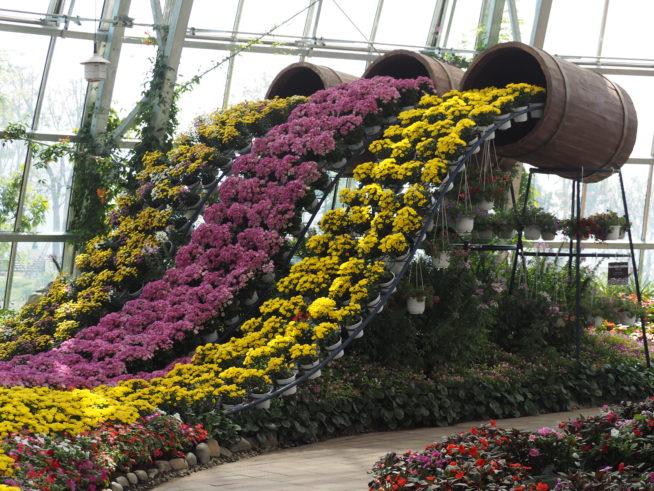カラフルな花々が、デコレーションされています