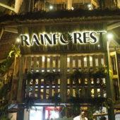 レインフォレスト(Rainforest)