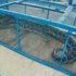 ミトーの動物園!?ドンタムスネークファームは蛇だけじゃなく、他の動物もたくさん!