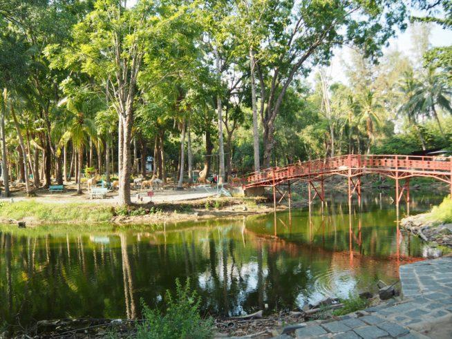 木陰の公園