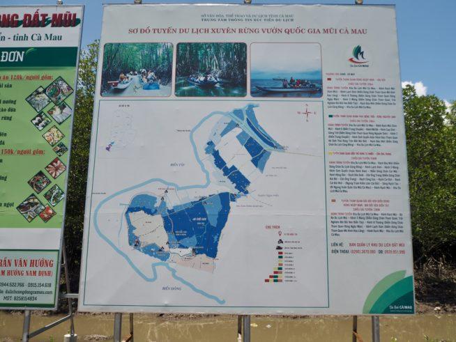 マングローブの林を散策