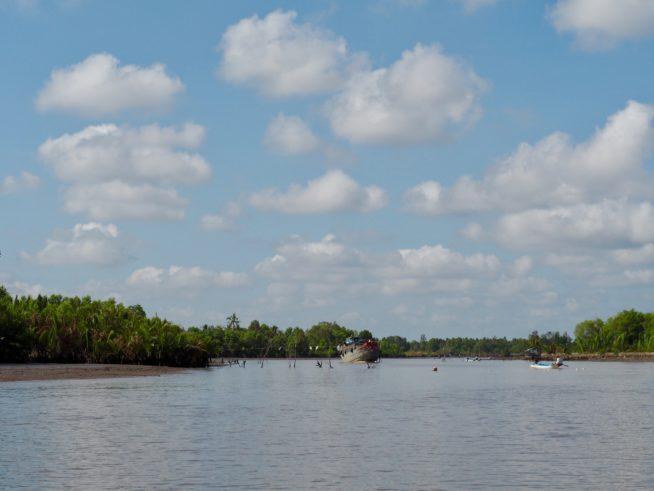 マングローブの茂る川の中を走って行きます